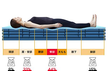 フレアベル サーモフェーズ ベッドマットレス プレミアムモデル・硬さの異なる7つの構造で正しい寝姿勢をサポート