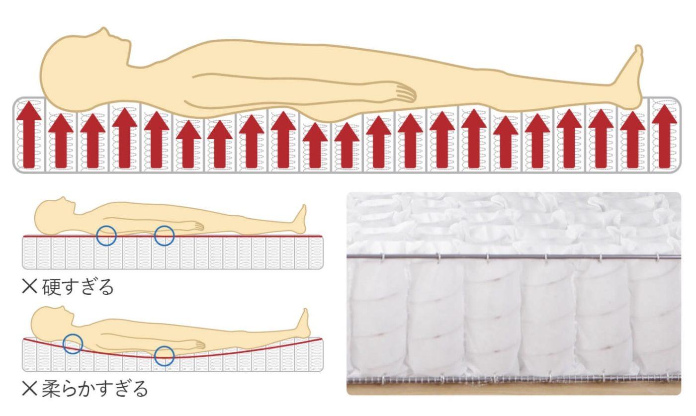 ビーナスベッド・国産ポケットコイルマットレス・体圧分散